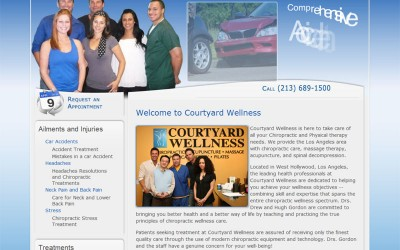 New Chiropractic Website for Los Angeles